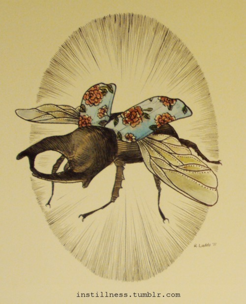 'Japanese Rhinoceros Beetle'  Rebecca Ladds, 2011. Available HERE.