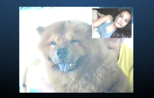 Isn't he so cute?! Fat fat fat baby!  Thank you Hachibebe! Let's skype again! Hehehe..