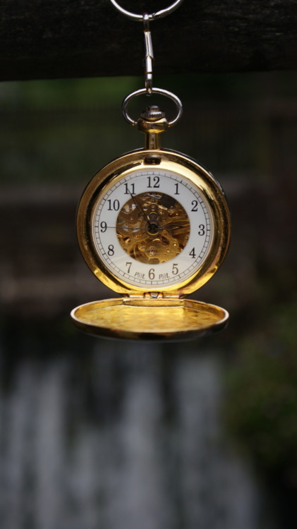 Victor Watermillock's pocket watch, that he does so treasure.
