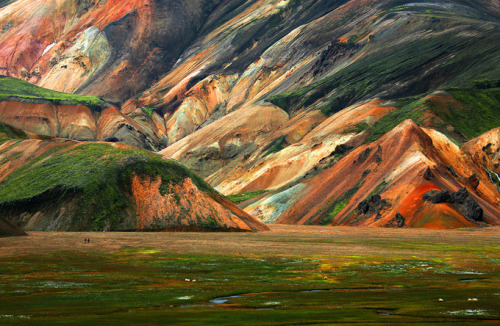 vintagevixenlgs:  No Lie This is a Photo of East Iceland Not an Oil Painting!   How Cool is That! Thanks to thecoolhunter.net