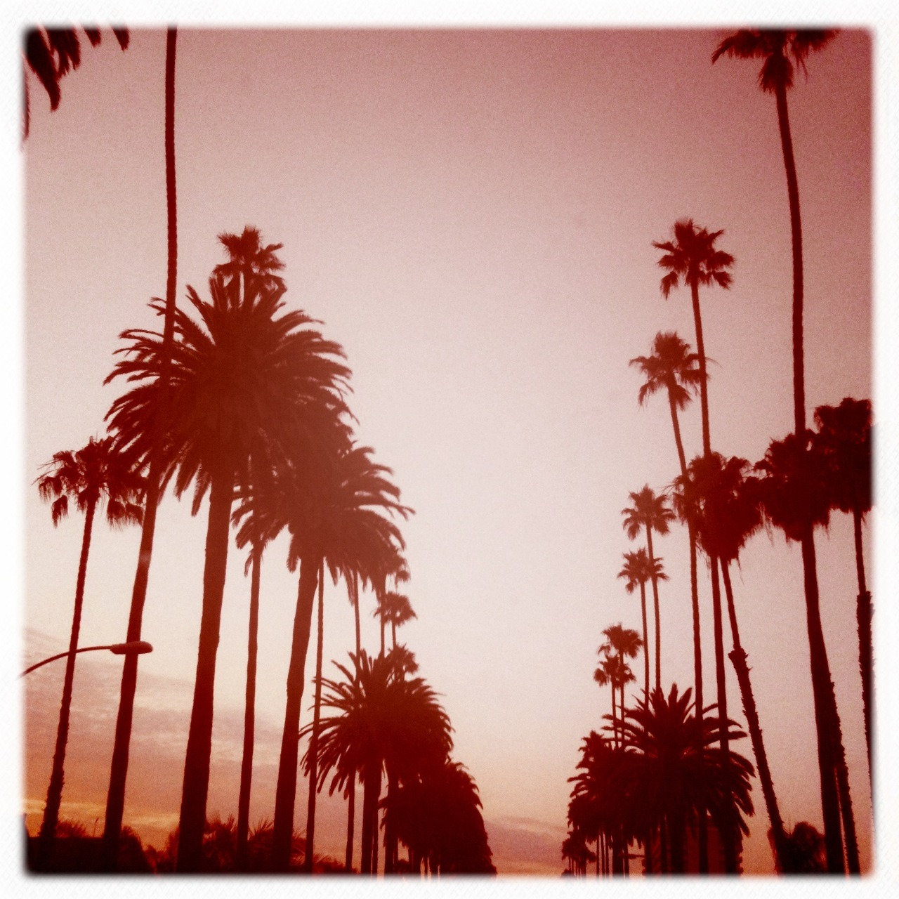 Red Skies At Night… Kaimal Mark II Lens, Ina's 1935 Film, No Flash, Taken with Hipstamatic