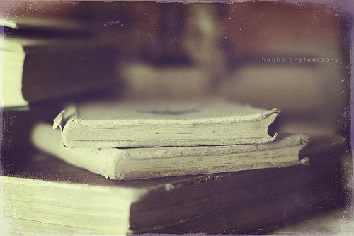 prettybooks: by Carmen Hache