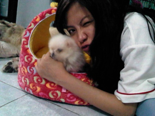 zhez:  baifern's new Puppy.. so cute… cto:baifern