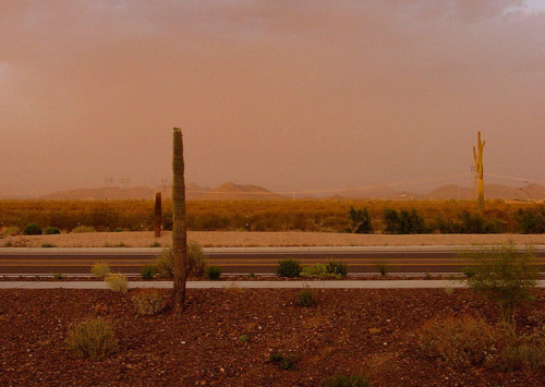 bobdavidsonaz:  Haboob on Flickr.