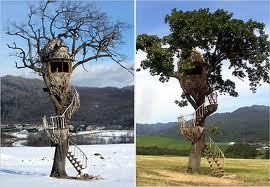 If my father built me a tree house like that, I might actually move out..XD
