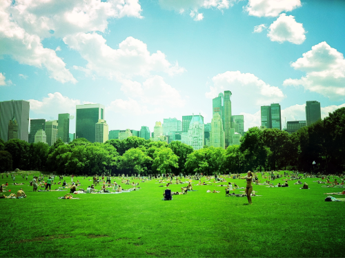 Happy summer, from Central Park.