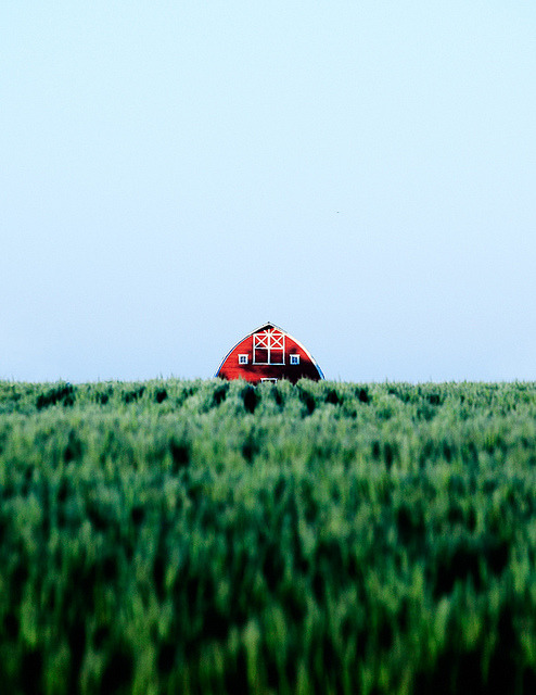 Barn Peep by Todd Klassy on Flickr.