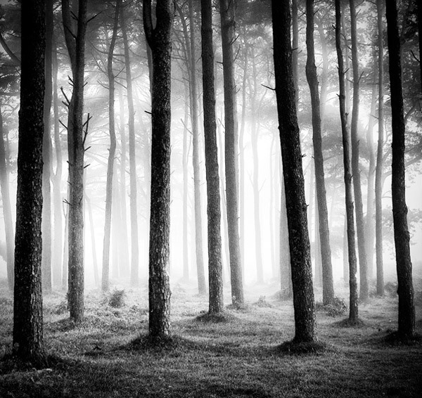 black-and-white:  (via Keith Aggett | Smashing Picture)