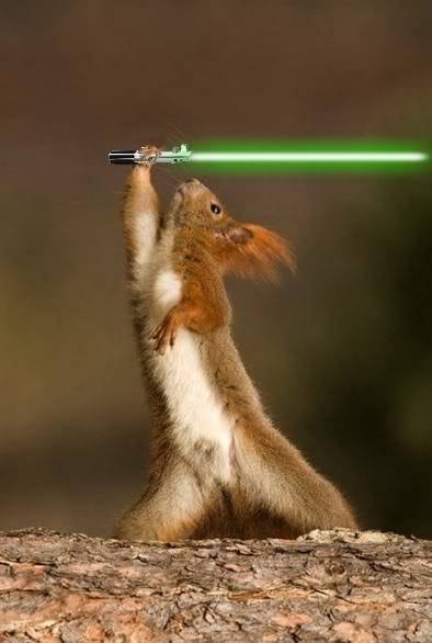 Awesome Jedi squirrel via Bit Rebels
