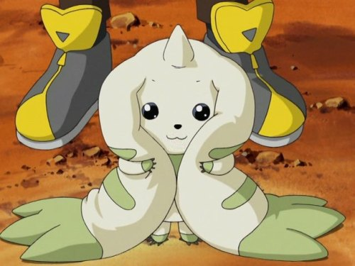 the-eighth-digidestined:  He's so cute!  T: Is that me? :3 Of course I'm cute! L: Don't show off.