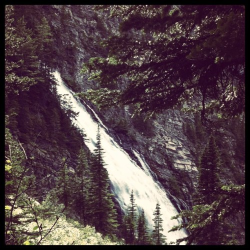 On the trail to Bertha Lake (Taken with instagram)