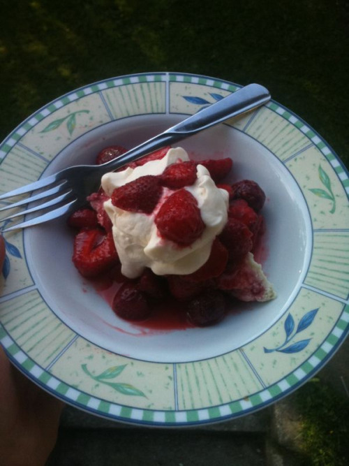 lom:  Strawberry shortcake made with Kentucky biscuits I made from scratch, real vanilla whipped cream and strawberries I picked today in a maple whiskey sauce. I fed it to an 85 year old and she said I'd make a good wife. Neat. I finished a bottle of blackberry wine :}  I want to eat this!
