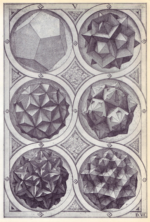 from Perspectiva Corporum Regularium by Wenzel Jamnitzer 1568