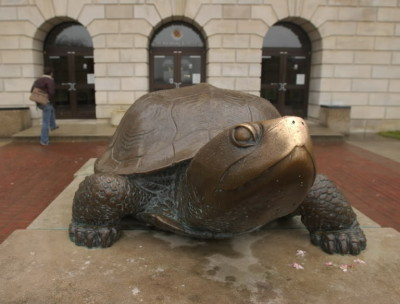 umd-adpi:  We love lions…but we adore terrapins too :)  My new home!