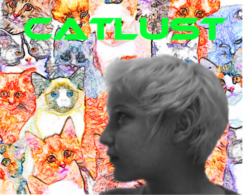 catlust 2011. two tracks. pitchin remix. yuh.. www.soundcloud.com/catlust