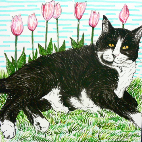 Sandy Peterson needed a drawing of her belated cat Blacky in a tulip garden. Ink, gouache, marker 12x12 in.