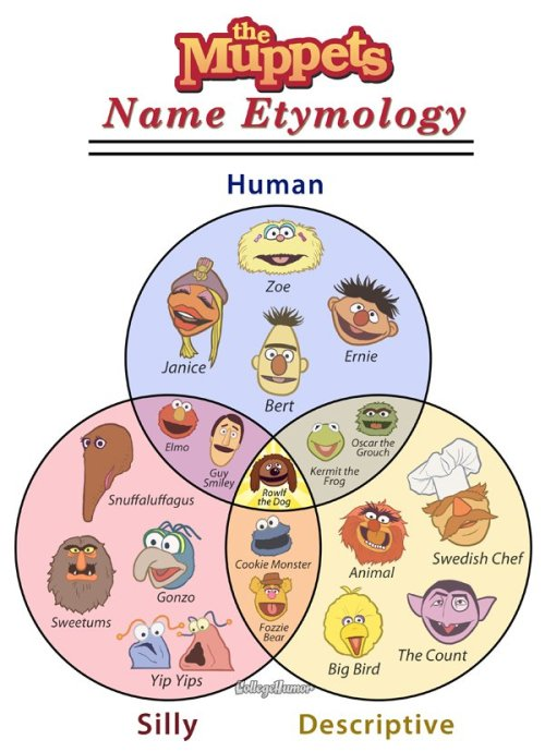 Muppet Names Etymology So you're already excited for the new Muppets movie? Good news, we are too.