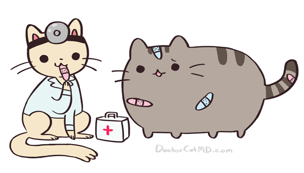 pusheen:  crapmachine:  doctor cat & pusheen ♥  Soooooooooo cute! Ahhh!  ♥♥♥