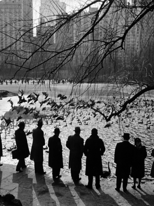 m3zzaluna:  Central Park on a sunny sunday afternoon, NY, 1943 photo by Andreas Feininger