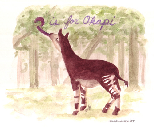 O is for Okapi Lena H. Chandhok