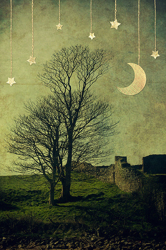 childofdanu:  Moon and Trees and Stars (by Child of Danu)