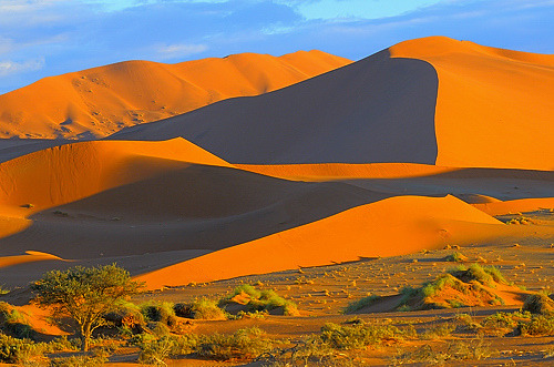 Namibia, just after sunrise (by VittorioRicci)