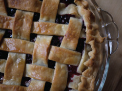 ABCD baked a homemade blueberry pie for Tobi Fairley's month of Americana theme guest posts!