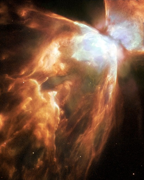 princesssylviap:  This image,  released April 29, 2004, of the Bug Nebula (NGC 6302) taken with the  NASA/ESA Hubble Space Telescope, shows impressive walls of compressed  gas, laced with trailing strands and bubbling outflows. Source: Reuters/NASA