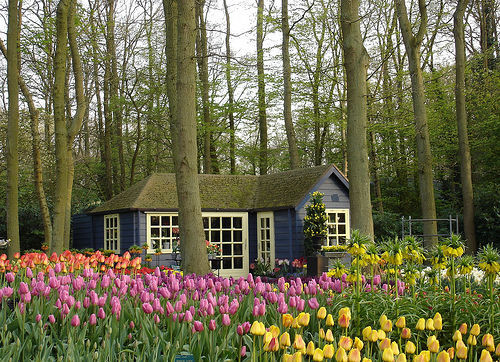 sunsurfer:  Garden Cottage, The Netherlands  photo by ana castro via prettypic