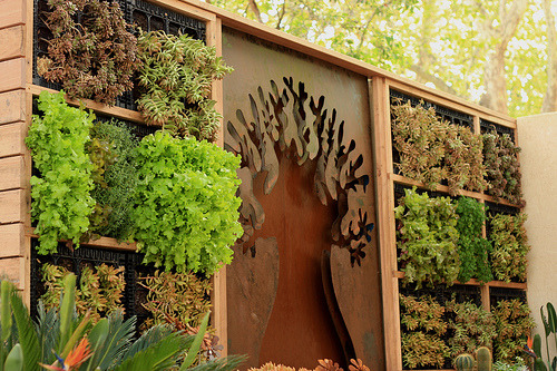 Vertical garden at the Melbourne Intarnational Flower and Garden Show by …donna