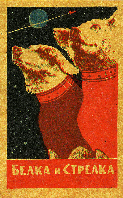 Dogs in #Space #CCCP wearespacegypsies:  CCCP7 by dan mogford on Flickr.