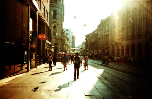 filmisgod:  Golden streets of Zagreb