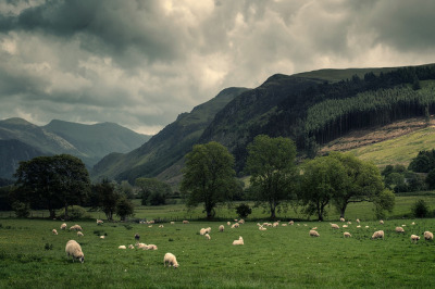 Valley Unknown by martinturner on Flickr.