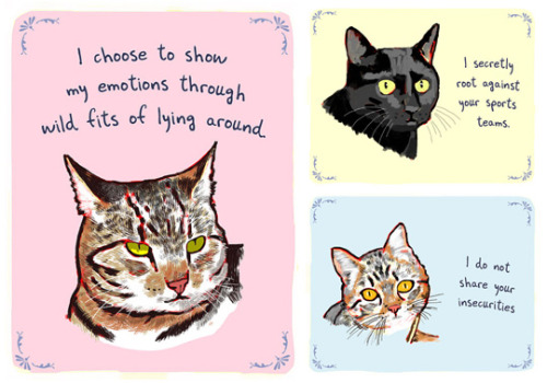 finefools:  Tiny Confessions From Your Cat