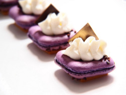 Square macarons, sable biscuit, cassis chocolate ganache, vanilla chantilly cream, chocolate disc. macaroncarre by wp228