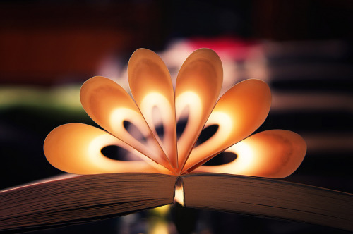 teachingliteracy:  the book of light. By Martin Kühn