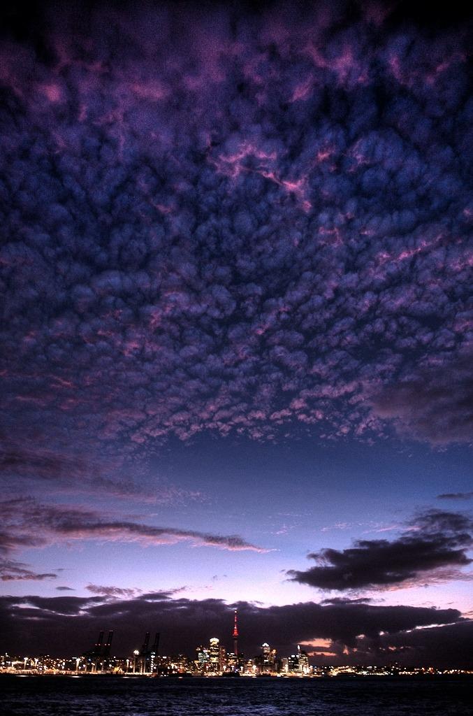 ninbra:  Evening twilight in Auckland, New Zealand.