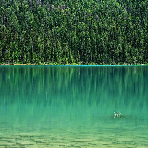 Emerald Lake by Ania Photography ✿ on Flickr.