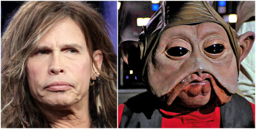 Look-alikes: Steven Tyler (Aerosmith frontman & American Idol Judge) vs. Nien Nunb (Sullustan smuggler & Copilot to Lando Calrissian in ROTJ)