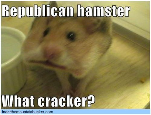 Republican hamster What cracker? updated…