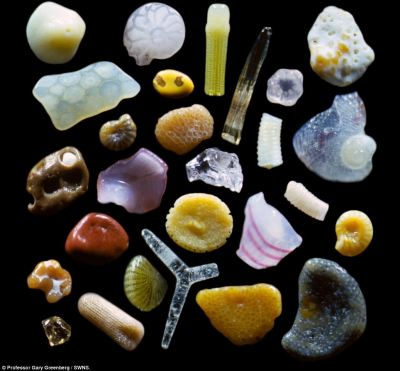robotindisguise:  Sand  (Viewed at a magnification of over 250  times real life)  This creeps me out a bit