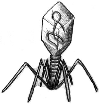 oneironautical:  I kinda-sorta really want a bacteriophage tattoo. No real reason. Bacteriophage hold no special significance to me, they just look fucking awesome.