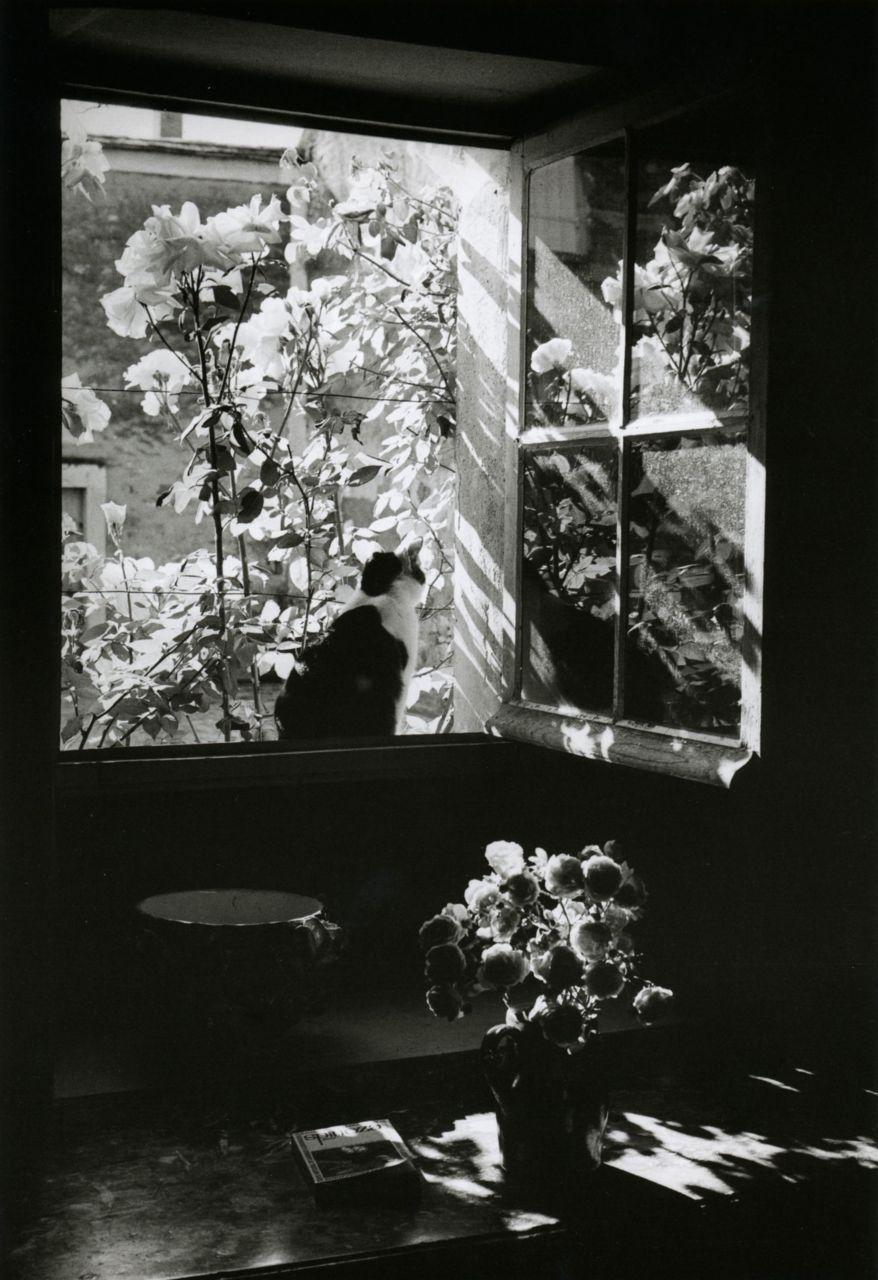 liquidnight:  Édouard Boubat Stanislas at the window France, 1973 From Édouard Boubat: A Gentle Eye