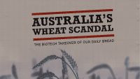 Australia's wheat scandal  Today we released our report outlining the controversy surrounding the GM wheat trials across Australia. Our investigations reveal the biotech takeover of our daily bread.  Australia's national science body, CSIRO, has approved the world's first human feeding trials of GM wheat. This is despite serious health, economic and environmental risks. We've detailed our findings in a new report titled 'Australia's wheat scandal: The biotech takeover of our daily bread.'  Our findings reveal that CSIRO is in partnership with GM biotech companies to commercialise Australia's daily bread. It is these companies that stand to benefit – and it is Australian farmers and consumers that stand to lose – if Australia pursues GM wheat. The involvement of biotech companies in the field trials represents a clear conflict of interest. It also corrupts the kind of thorough risk analysis that would have prevented the release of GM wheat across Australia.  Health Risk Australia is the first country in the world to test GM wheat on humans. GM wheat will only be tested on Australians in short-term and superficial trials that run for just 1 day. There is no stated intention to test for long-term effects or other negative health effects such as allergic or toxic reactions. Read the open letter from scientists and doctors around the world regarding human feeding trials of genetically modified wheat in Australia  Read more by clicking on source or pic thanks