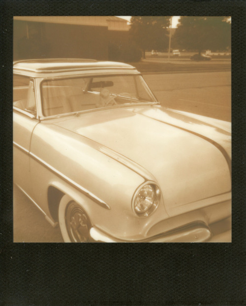 Better With Browns Than Pinks. Polaroid Sun 600.