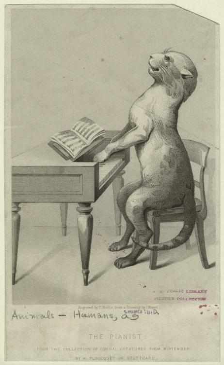 "I iz tickling the ivoriez. This bizarre print of a cat playing the piano - engraved by T. Hollis based on a drawing by J. Mason - is currently in our Mid-Manhattan collection. The wacky piece was inspired by ""the comical creatures from Wirtemberg"" by Hermann Ploucquet (of course). Any requests? ""Cat On A Hot Tin Roof,"" maybe? ""Cat's In The Well""? ""The Stray Cat Strut?"" ""Cat's In The Cradle?"" We can go on and on. Rock on, totally weird Caturday. Rock on."