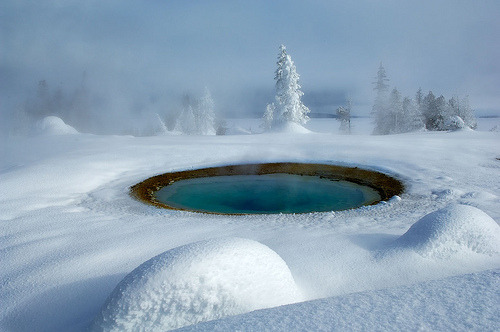 blinkanditsover:  Winter Yellowstone-2 (by laurieexcell)
