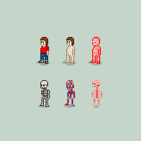 8 Bit Anatomy illustration by Diego B. :: via flickr.com