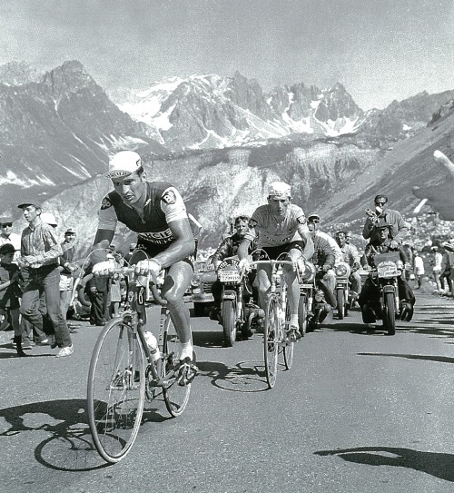 cadenced:  Raymond Poulidor and Roger Pingeon climb the Col du Galibier in the 1967 Tour de France. Whilst Felice Gimondi would take the stage running from Divonne-les-Bains to Briançon, Pigneon would maintain his hold on the maillot jaune through to Paris. The picture comes from L'Equipe's Tour de France, 100 ans 1903-2003.