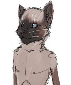 cat pple everything I draw lately is shit help